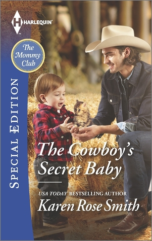 THE COWBOY'S SECRET BABY - KAREN ROSE SMITH