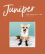 JUNIPER: THE HAPPIEST FOX - JESSIKA COKER