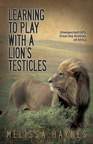 LEARNING TO PLAY WITH A LION'S TESTICLES