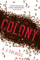 THE COLONY - A.J. COLUCCI